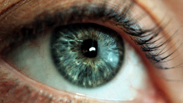 Article image for Diabetic Macular Oedema