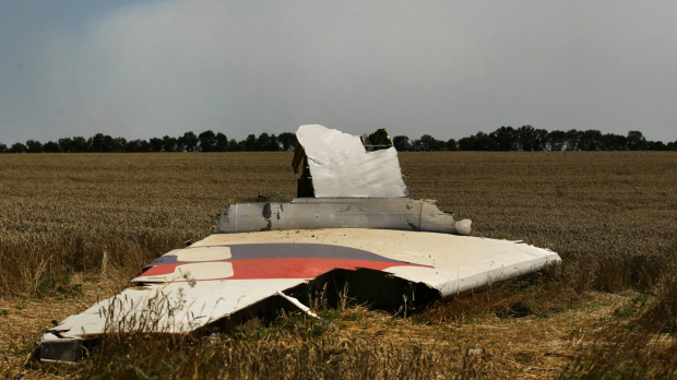 Article image for Report sheds light on MH17