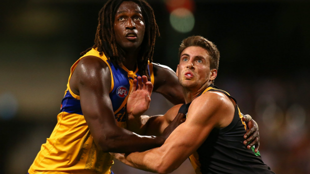Article image for Nic Nat on track for Pies