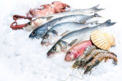 A culinary community initiative and click 'n' collect seafood