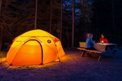 Camping survival tips for Millsy