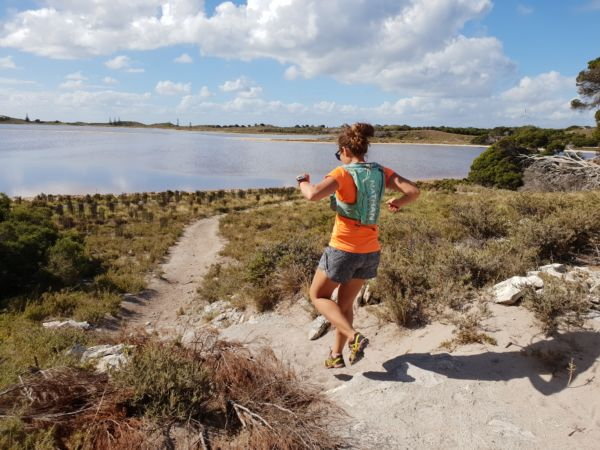 Article image for New run planned for Rotto