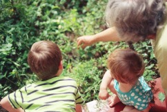 How are the roles of grandparents changing?