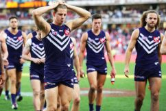Acres in the mix for Fyfe replacement