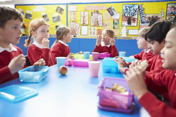 Article image for Healthy food 'should be subsidised' at schools